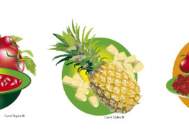 vector food illustrations